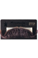 Fausse Moustache Major